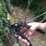 Best Pruning Shears Reviews 2019: Complete Buying Guide