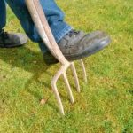 How to aerate your lawn : 7 steps that you should definitely follow