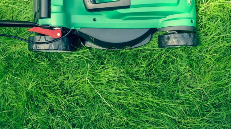 Best Lawn Aerator (manual U0026 Machine): Reviews And Complete Guide 2018