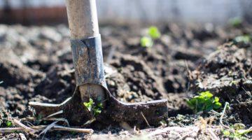 best garden spade