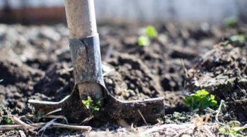 5 Best Garden Spade Reviews: Complete Buying Guide 2018