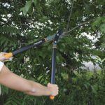 Fiskars Bypass Lopper Review: Must Read Before You Buy